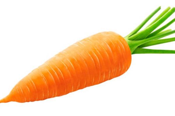 món ăn ngon từ carrot