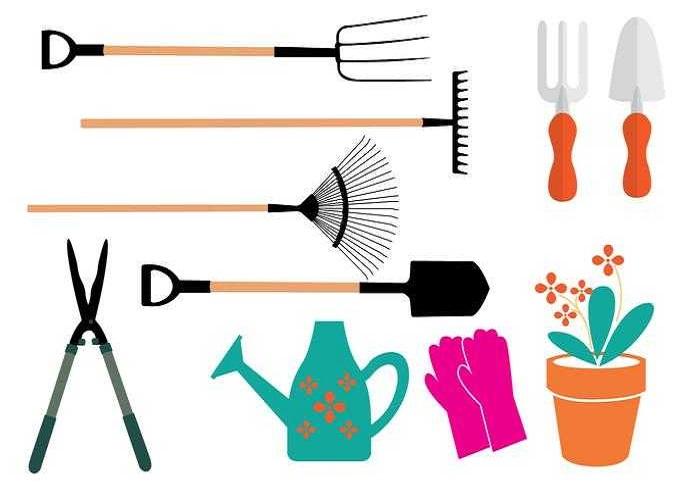 dụng cụ trồng rau sạch tại nhà